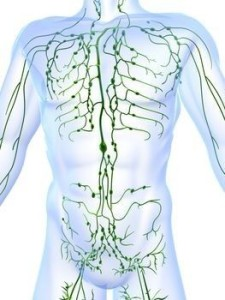 Advanced Myotherapy Melbourne Health